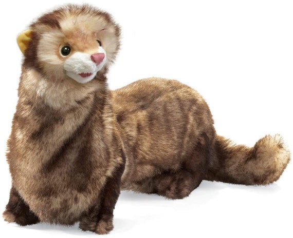 Puppet Ferret