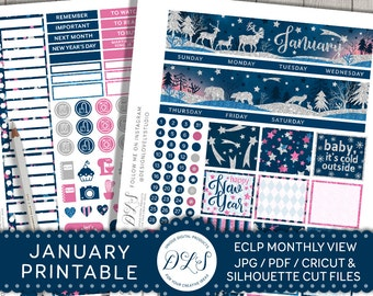Printable January Planner Stickers, January Monthly Kit, EC January Planner Stickers, January Monthly View, January 2018 Stickers, MV117