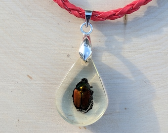 Beetle Necklace, Beetle in Resin, Resin Jewelry, Real Insect In Resin, Insect in Resin, Insect Necklace, Boho Necklace, Resin Jewelry