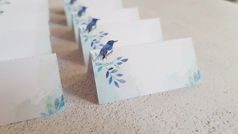 Lot of 12 brand-places theme blue bird virgins or with first name