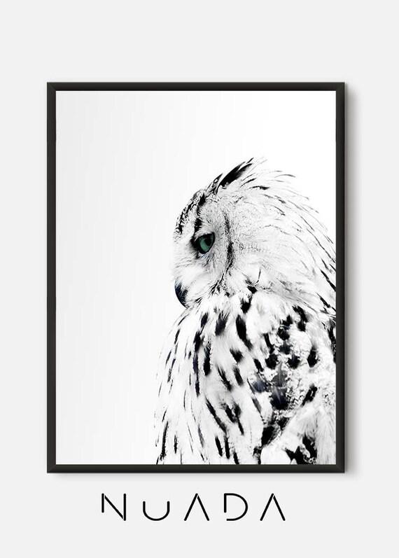 Sowa Print Czarno Białe Zdjęcie Sowa Nowoczesny Plakat Zwierząt Minimalistyczny Plakat Zwierzęta Dzikich Zwierząt Dzikie Zwierzęta Sowa Wystrój