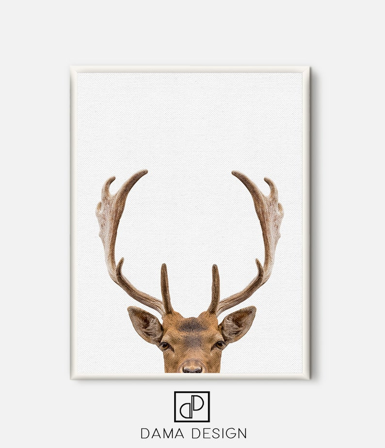 image relating to Printable Deer Antlers called Deer Print, Deer Antlers, Nursery Wall Artwork,Printable Pets, Progressive Poster, Woodlands Animal, Woodland Decor, Animal Poster, Minimalist Artwork