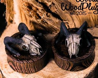 Wenge wood ear plugs with skull -wooden ear gauges - plugs wood - 3D organic plugs 18mm / 20 mm / 25 mm / 30 mm / 35 mm/ 40 mm 11/16'' 3/4''