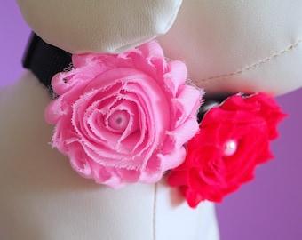 Dog Collar Flower Any Color, Wedding Collar Bow, Girl Dog Dress Up, Chiffon Shabby Flowers Blue, Pink, Purple, Green, Gray, Coral, Aqua, Red