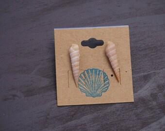 Auger shell earrings