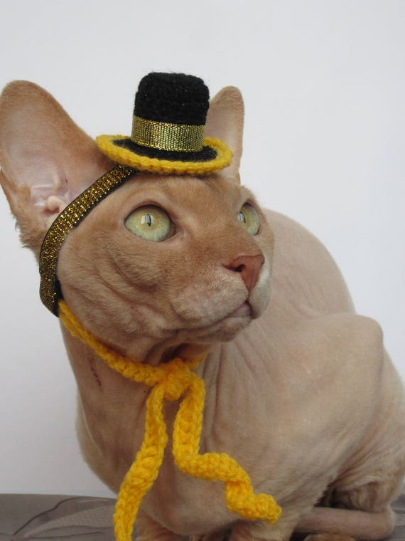 Katze Hut Hut häkeln Katze Tier Hut Katze Katze Kostüm | Etsy