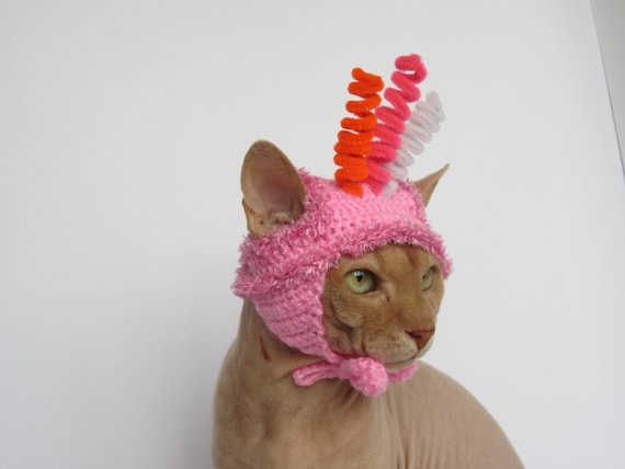 Katze Hut Hut häkeln Katze Tier Hut Katze Katze Kostüm   Etsy
