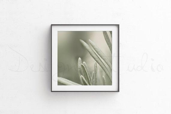 Square black frame mockup minimalist mockup Poster Frame | Etsy