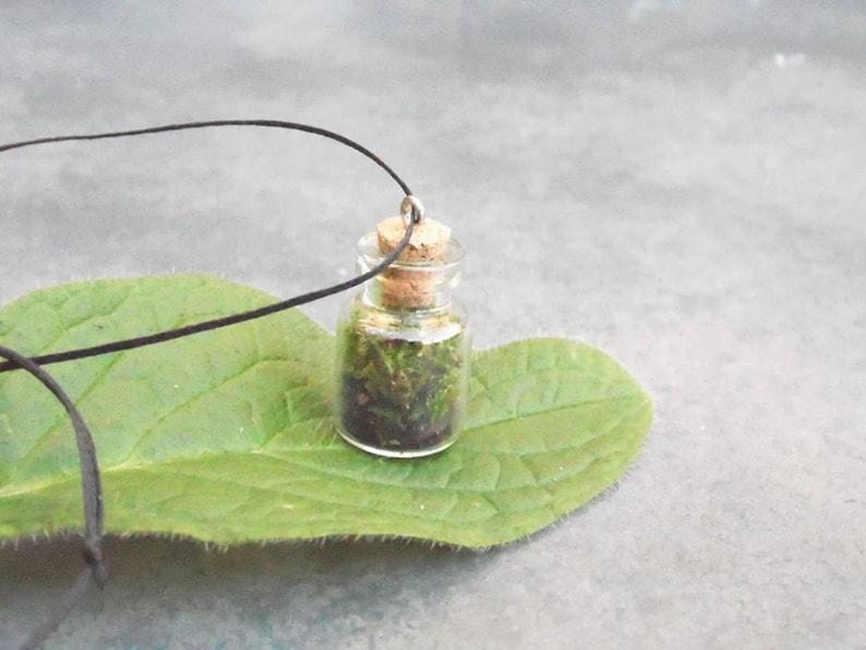 Terrarium Necklace  Moss terrrarium  Vial Bottle Necklace  Botanical Necklace  Glass Terrarium Necklace  Moss in Vial