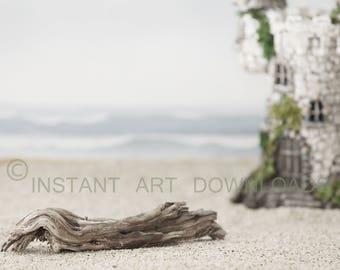 Wall Instant  Art Stock Photography Digital Download Background Backdrop Beach Castle Sand Driftwood Ocean Portrait Setting Scene Coastline