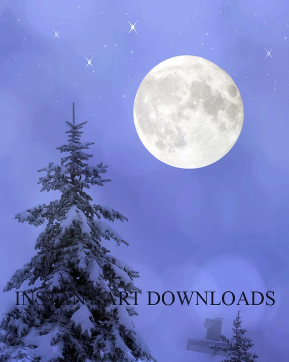 Christmas tree, Snow, Full moon, Stars, Photography, Digital Download,  Photo Background, Digital Backdrop, Stock Photos, Studio Pictures,