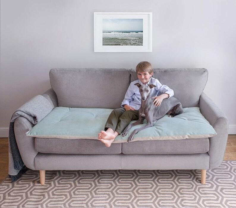 Pet Furniture Protector In Seaspray Velvet Pet Couch Etsy