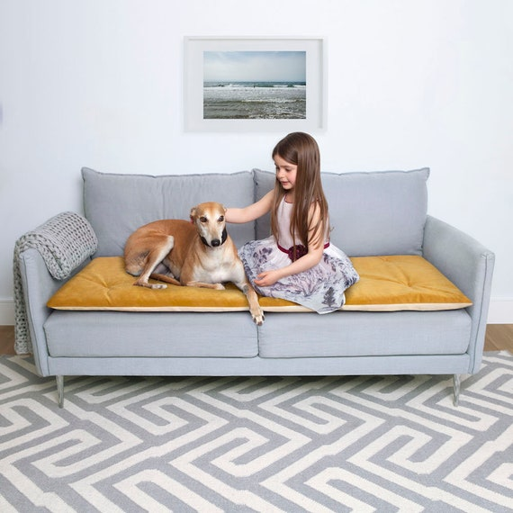 Pet Furniture Protector In Turmeric Velvet Pet Couch Etsy