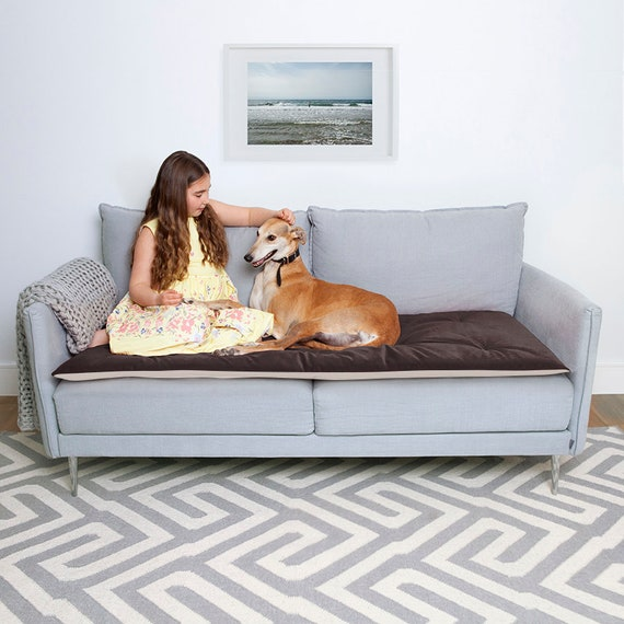 Incredible Pet Furniture Protector In Mole Velvet Pet Couch Protector Pet Furniture Cover Pet Sofa Cover Couch Cover For Dogs Sofa Topper For Pets Ocoug Best Dining Table And Chair Ideas Images Ocougorg
