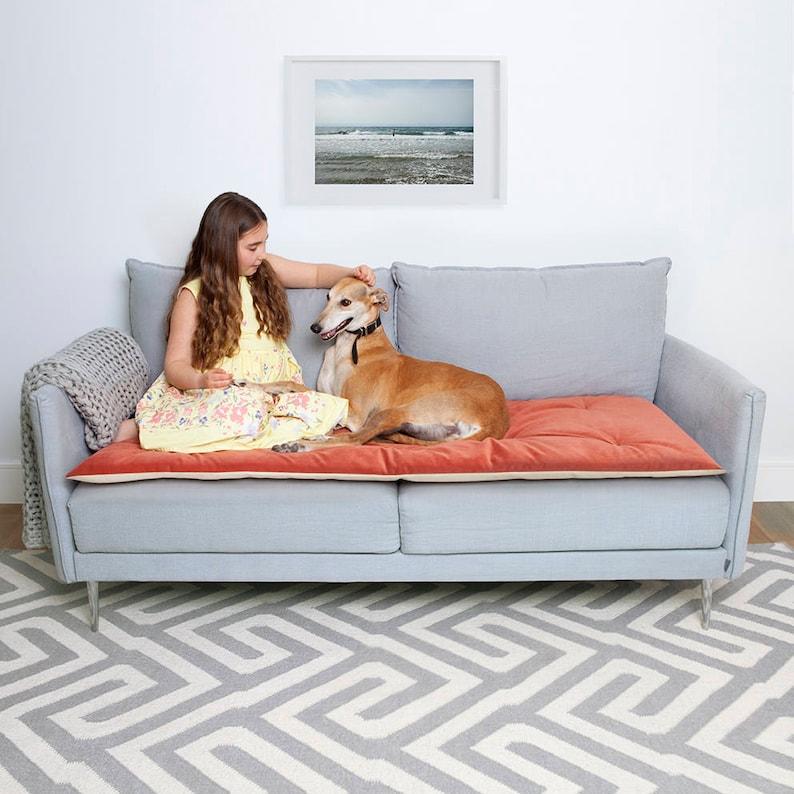Pet Furniture Protector In Tea Rose Velvet Pet Couch Etsy