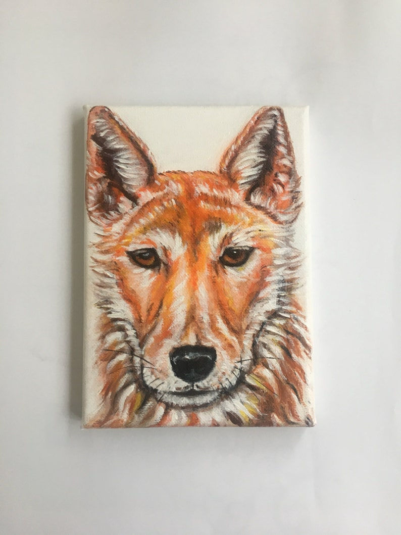 CUSTOM ORDER, Charity painting, Dingo painting, The Red Dog, Australian  wild life, This Original painting was donated to Sydney Dingo Rescue