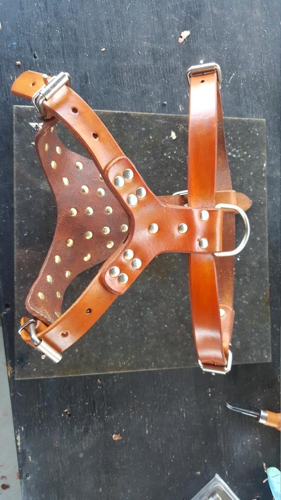Harnais en cuir pour chien, harnais pour chien en cuir avec pointes, réalisé et fabriqué à la main, harnais usiné avec des pointes, personnalisé