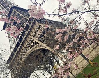 Paris at Springtime Eiffel Tower 8x10 Print