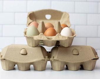Half Dozen Egg Cartons (Pack of 10) - Blank Top - Carton Holds 6 Eggs (3x3 label size)