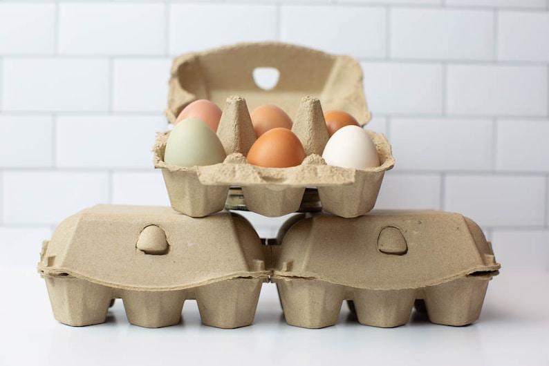 Half Dozen Egg Cartons Pack of 10  Blank Top  Carton Holds image 0
