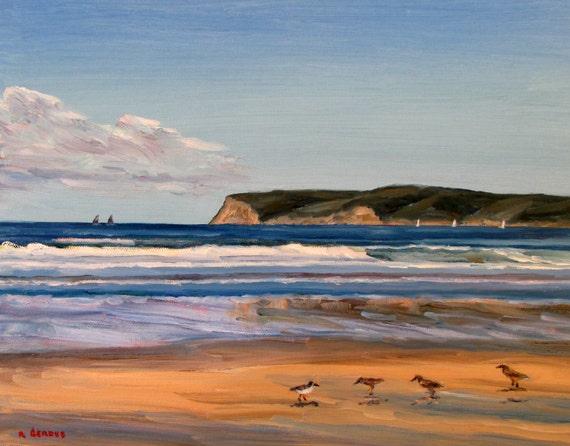 94731a92ed Coronado Beach with Sandpipers