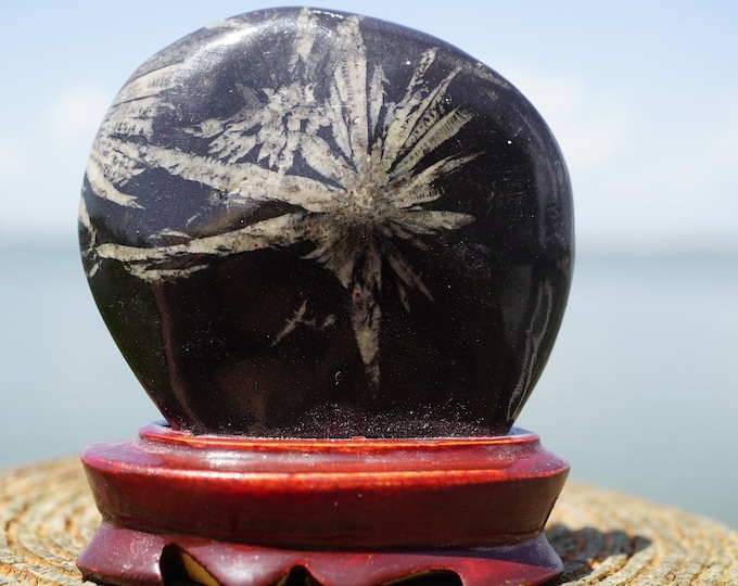 Polish CHRYSANTHEMUM STONE - wITH Stand 200g 75x65x20mm - This Healing Crystal can increase vitality and grounding F53
