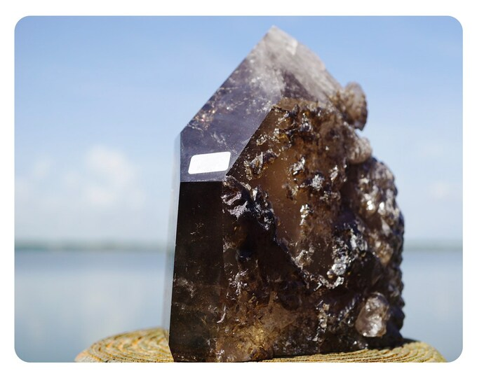 Dark Brown SMOKY QUARTZ Natural Point Skelital formations and Trigonic.  Over 2 lbs 11x7x6 This Healing Crystal can Protect