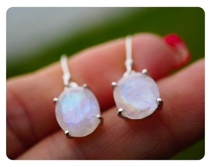 Faceted RAINBOW MOONSTONE Earrings in 925 Silver - Blue Fire AAAThese Healing Crystals has Goddess Energy EXMSF