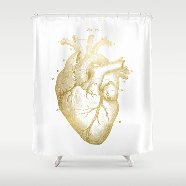 Gold Heart Shower Curtain Medical Anatomy