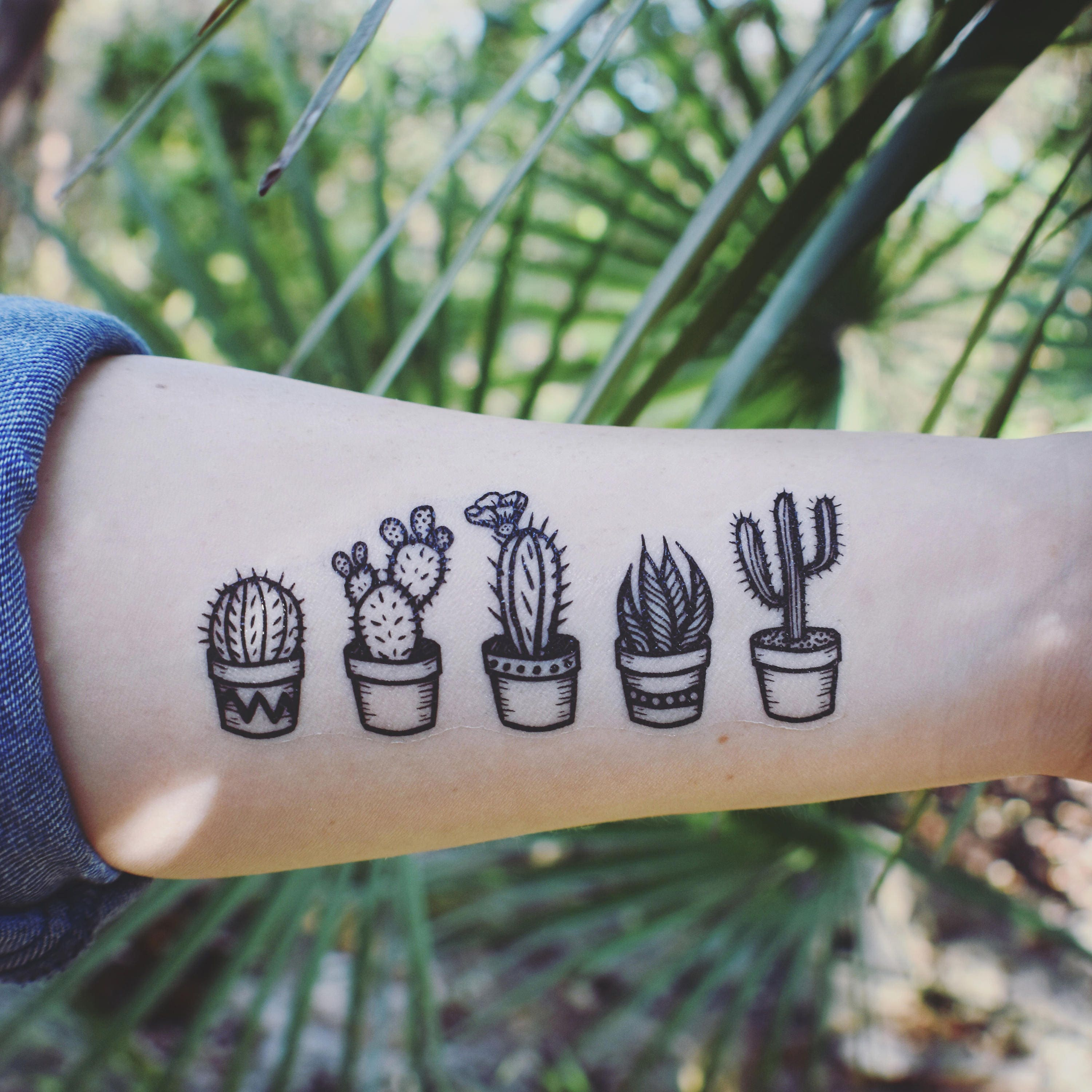 Small Cactus Tattoo: Potted Cactus Temporary Tattoos Succulent House Plants