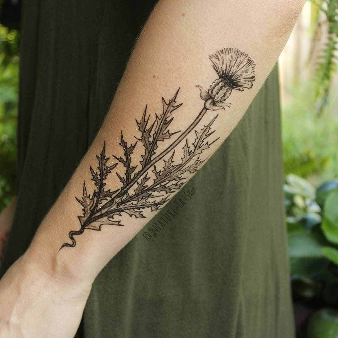 Flower Nature Tattoo: Purple Thistle Flower Temporary Tattoo Black Line Drawing