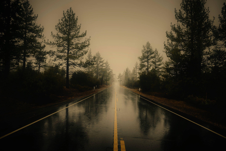 Highway Photography Backdrop Photoshop Backdrop