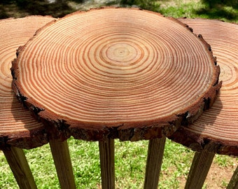 Set of 15 - 10 inch wood circles, tree circles, wood slices for sale, wood centerpieces, wedding centerpieces, wood slabs!