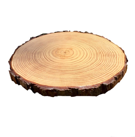 Wood Slice Chargers: 13 Inch TREATED Wood Slices Plate Chargers Dining Room