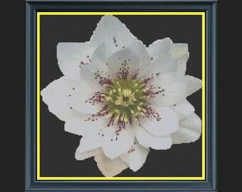 'Soul Searcher' Flower Cross-Stitch Chart