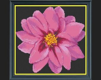 'Sugar Plum Dreams' Dahlia Flower Cross-Stitch Chart