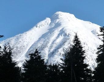 Snowy Peak - Mountain Peak - Forest - Mountain Peak Photo - Winter Photo - Digital Photo - Digital Download - Instant Download - Home Decor