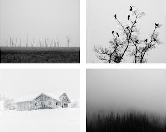 Winter Photo - Winter Photo Set - Winter Prints - Black and White - Set of 4 Photos - Set of Four - Digital Photo - Digital Download - Sale