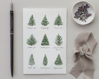 Holiday cards etsy christmas tree medley modern christmas card set of 8 holiday cards blank christmas card holiday stationery christmas tree card set m4hsunfo