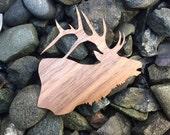 2 Pack - Roosevelt Bull Elk Mountain Call Walnut Wood Laser Cut Sticker