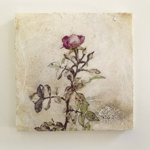 Autumn Rose, Venetian Plaster, mixed media botanical art for the home