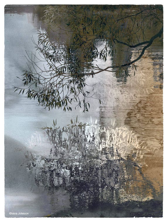 The Willows, limited edition fine art print
