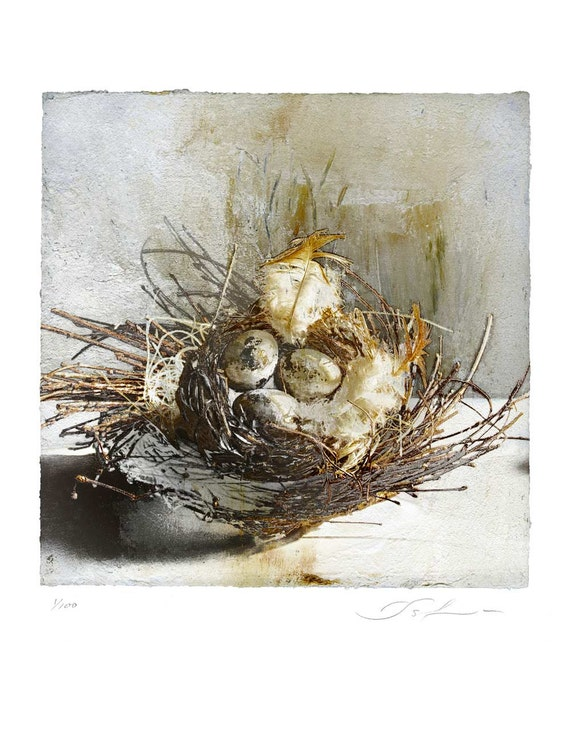 The Nest, limited edition fine art print