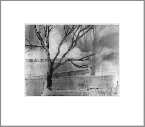 Tree shadow 1, charcoal drawing, black and white