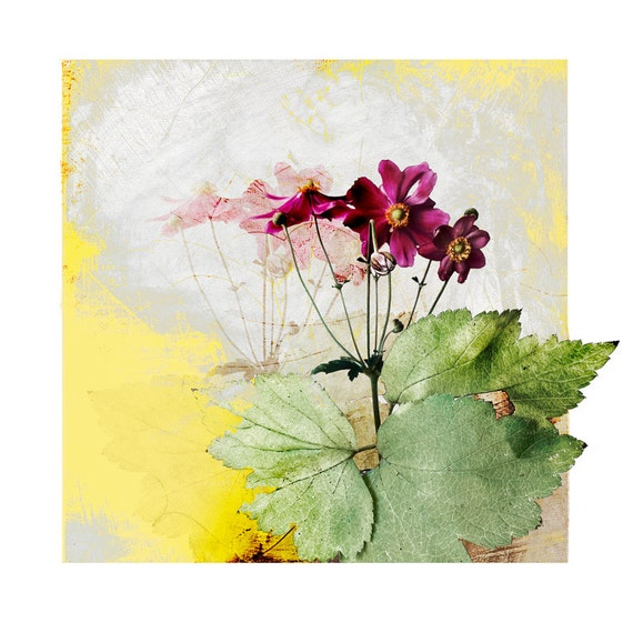 Anemone in Spring, fine art print, affordable art,wall decor, botanical art, archival print, contemporary print,floral art, art for interior