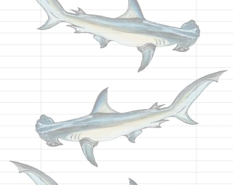 Hammerhead Shark, Letter Writing Sheets, Stationary, Digital Download,  Printable,  Shark Stationary, Shark Design