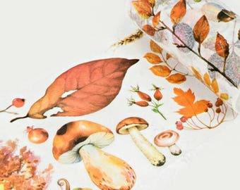 Autumn Colours Washi Tape, Wide Washi Tape, Masking Tape - WT407