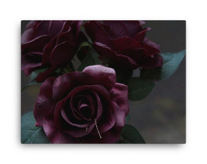 Cemetery Roses Canvas Print- Multiple Sizes
