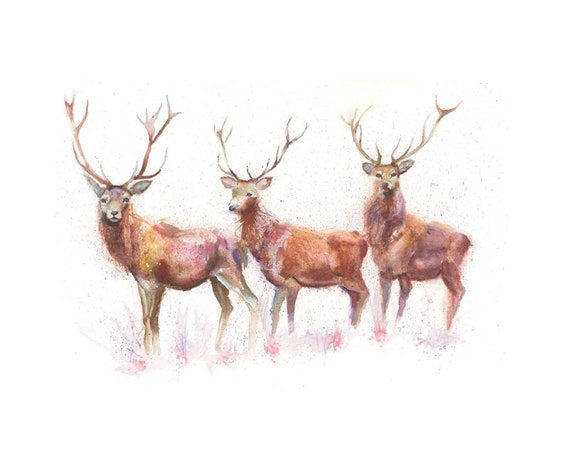 Limited Edition Print of THREE STAGS watercolour by HELEN APRIL ROSE  458