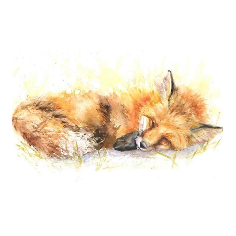 Sleeping Fox print watercolour